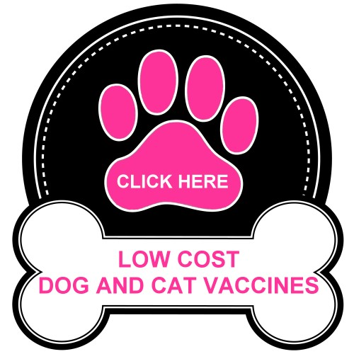 northern_california_dog_and_cat_vaccines500