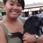 Beagle-Lab Mix is vaccinated in Sacramento at the Freeport Blvd location of dogandcatshots.com
