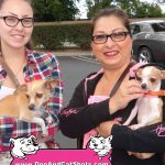 30-Brentwood,-Chi,-Lexie-Huera-dog-and-cat-shots