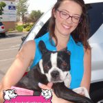 28-Rocklin,-Boston-Terrier,-Izzy-dog-and-cat-shots