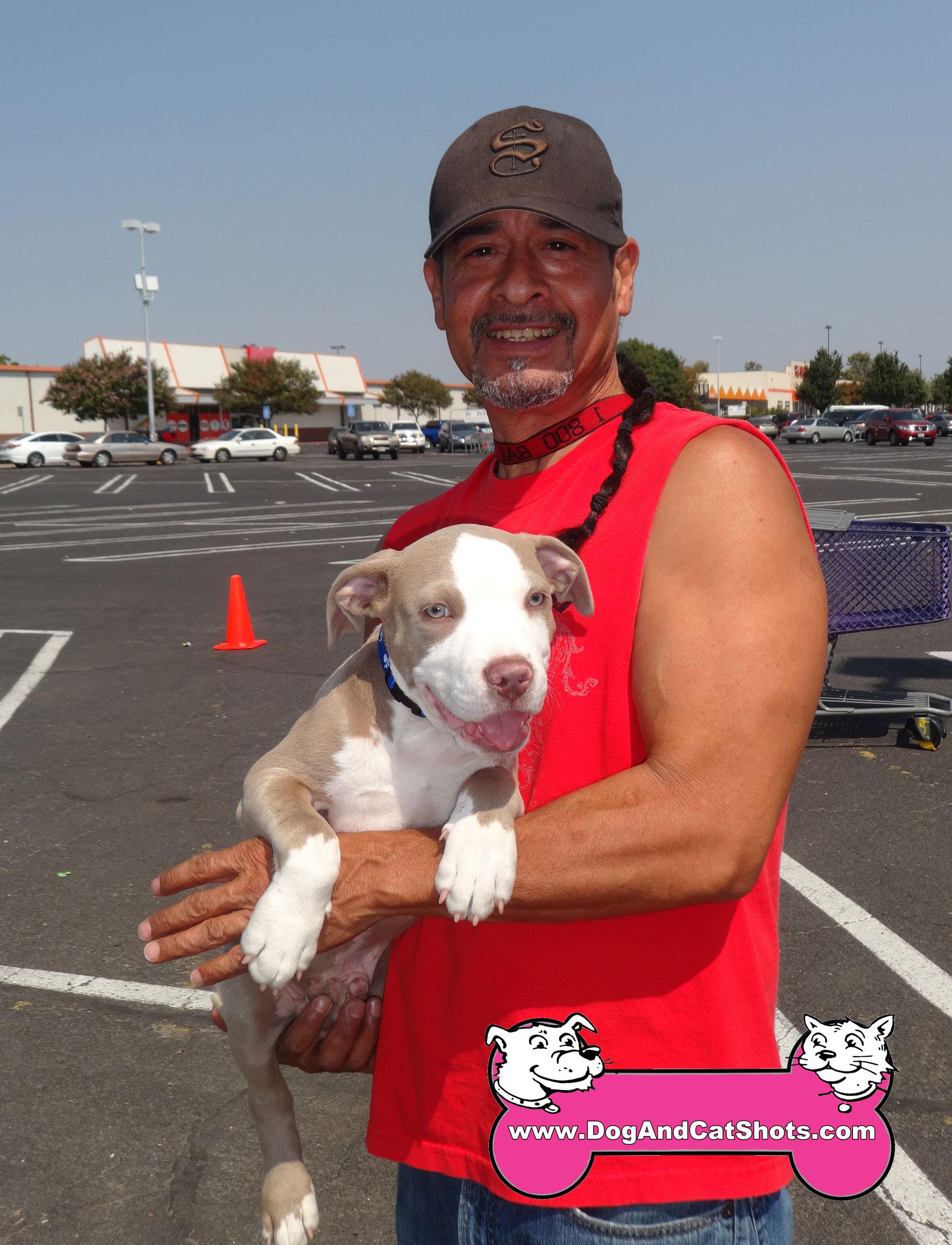 Dog Training Degree California