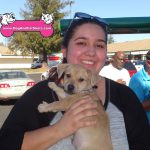 22-Foothill-Farms-Antelope,-Chihuahua-Pitbull,-Ted