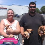 18-turlock-chihuahua-frances-butterfly-miscita