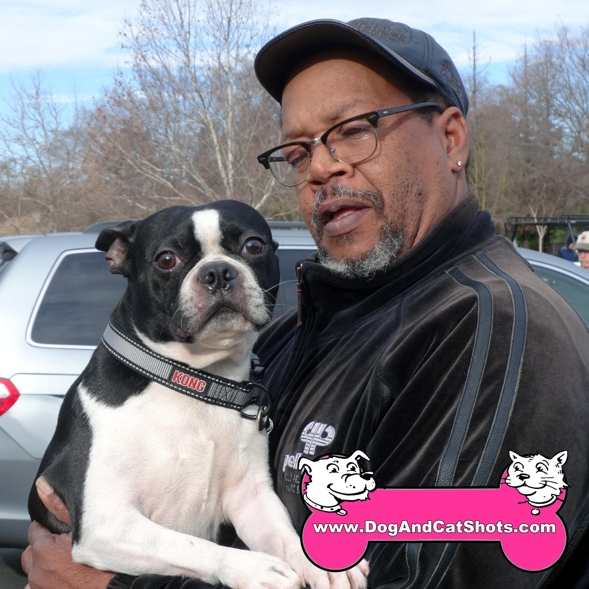 4-am-Freeport--Boston-Terrier-Romeo-dog-and-cat-shots