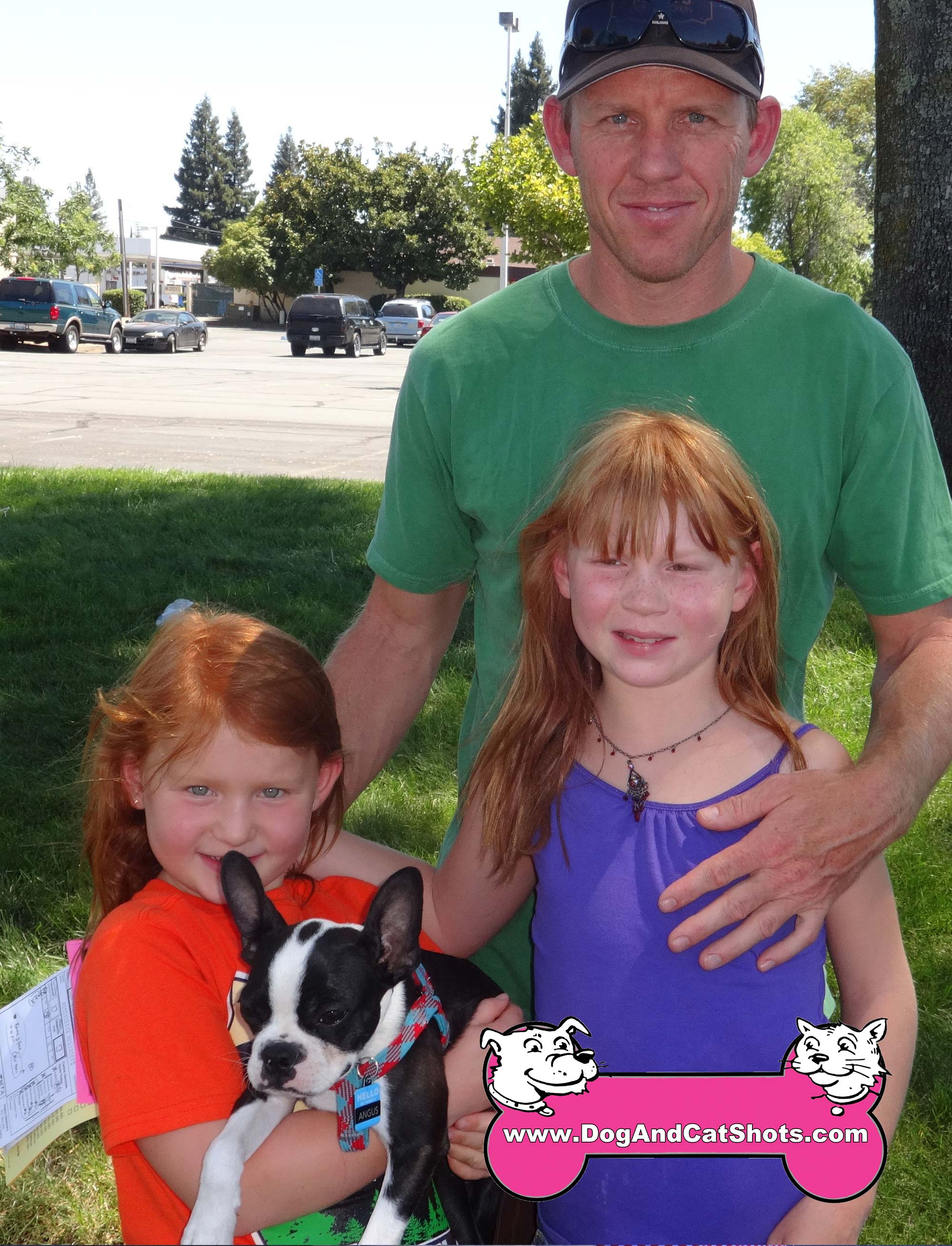 31-Fair-Oaks-Orangevale,-Boston-Terrier,-Angus,-plus-RS