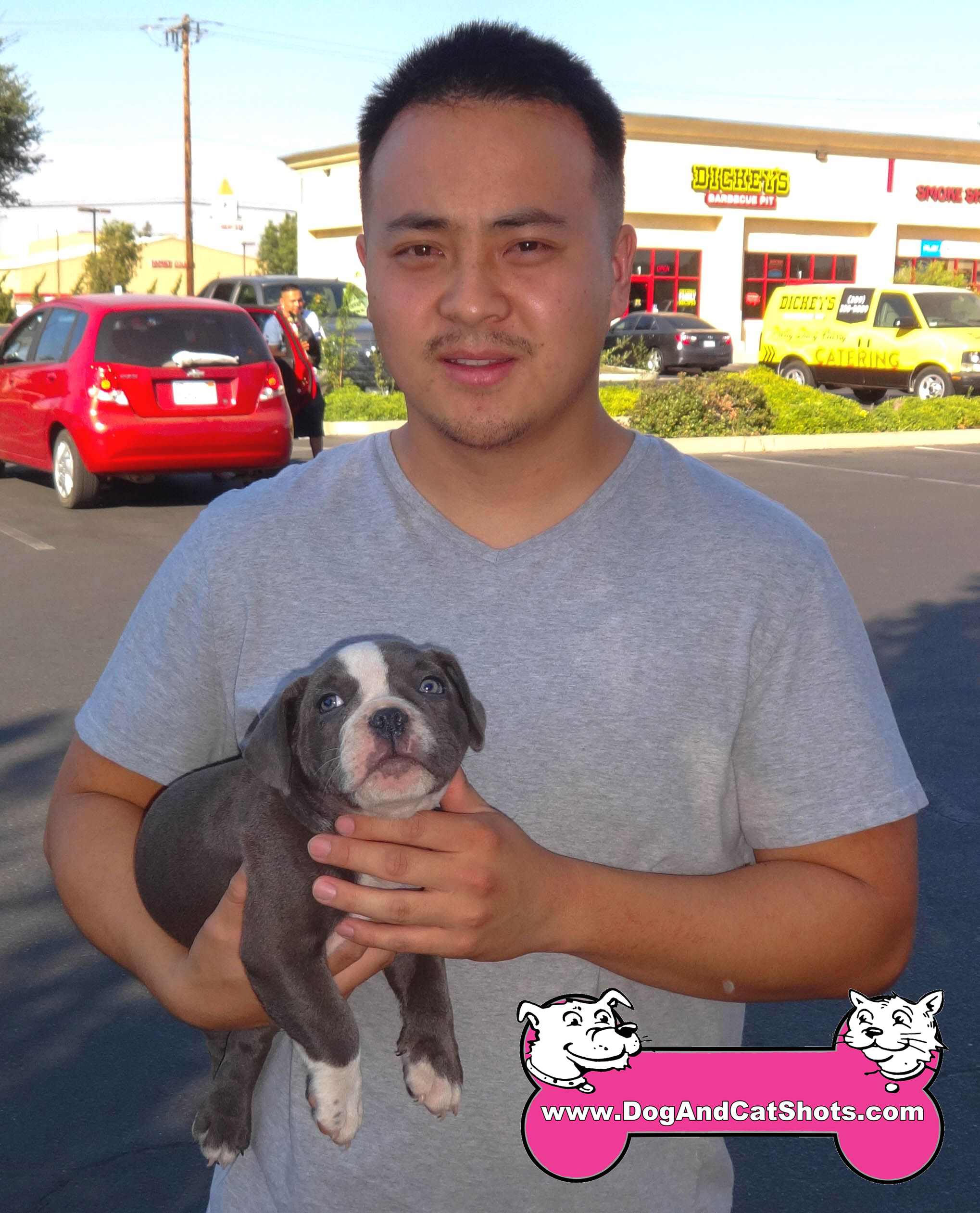 A 2 Month Old American Bully Visited Us In Merced