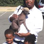 18-sacramento-arden-chinese-crested-foxster