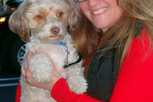 Echo The Poodle Mix Came To Our Antioch Clinic