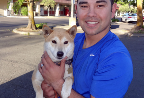 Yumi the Shiba Inu Visited  Our Woodland Clinic