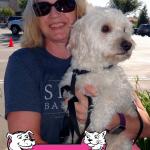 12-folsom-maltese-poodle-charlie