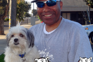 Murphy the Lhasa Apso Visited Our Lodi Clinic