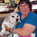 5-woodland-beagle-scoutie