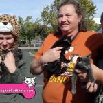 14-south-sacramento-freeport-4-kittens-for-sale-9167430347