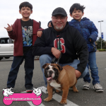 14-placerville-english-bulldog-taco