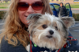 Bothe The Shih-Tzu Visited us in Antioch
