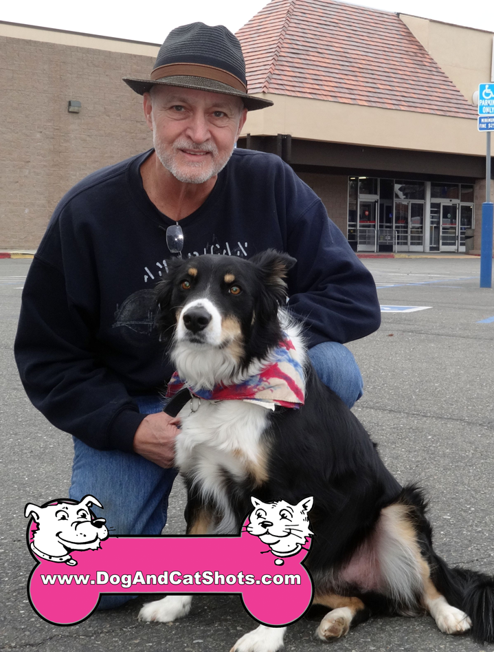 12-placerville-border-collie-roscoe