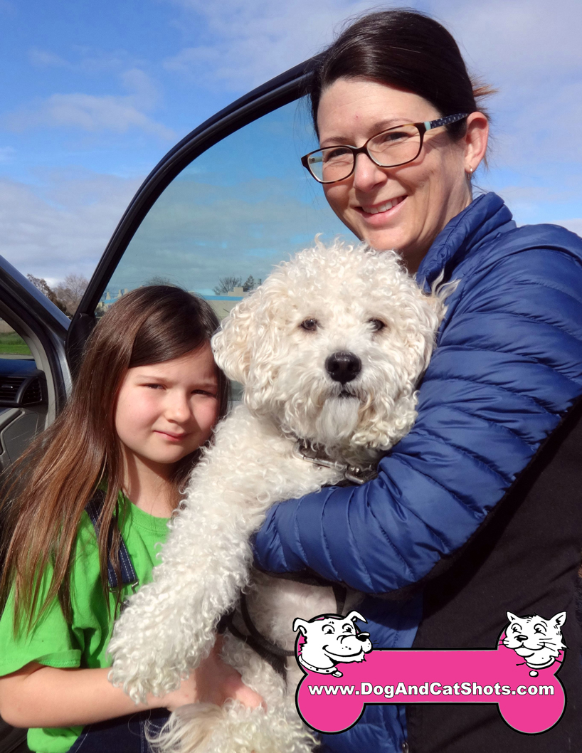 Cousteau the Miniature French Poodle Visited us in Antioch