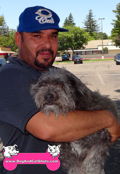 Fluffy the crossbreed visited us in Antelope