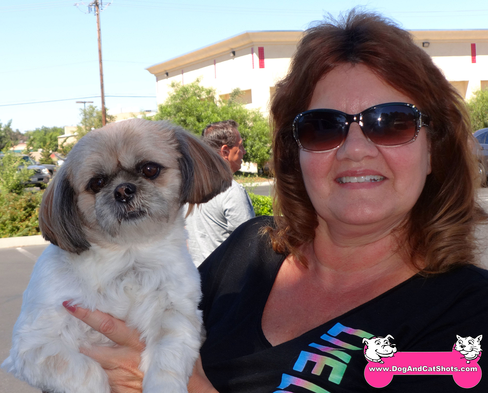 Zoe the Shih-Tzu visited us in Atwater