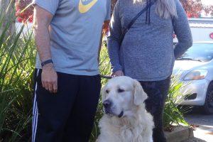 Morri, the Golden Retriever at our Sacramento Clinic.