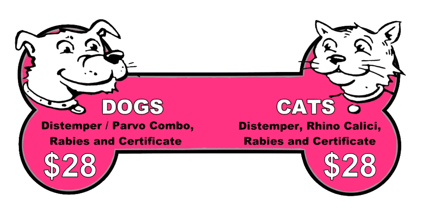 Dog and Cat Shots as low as $26.00
