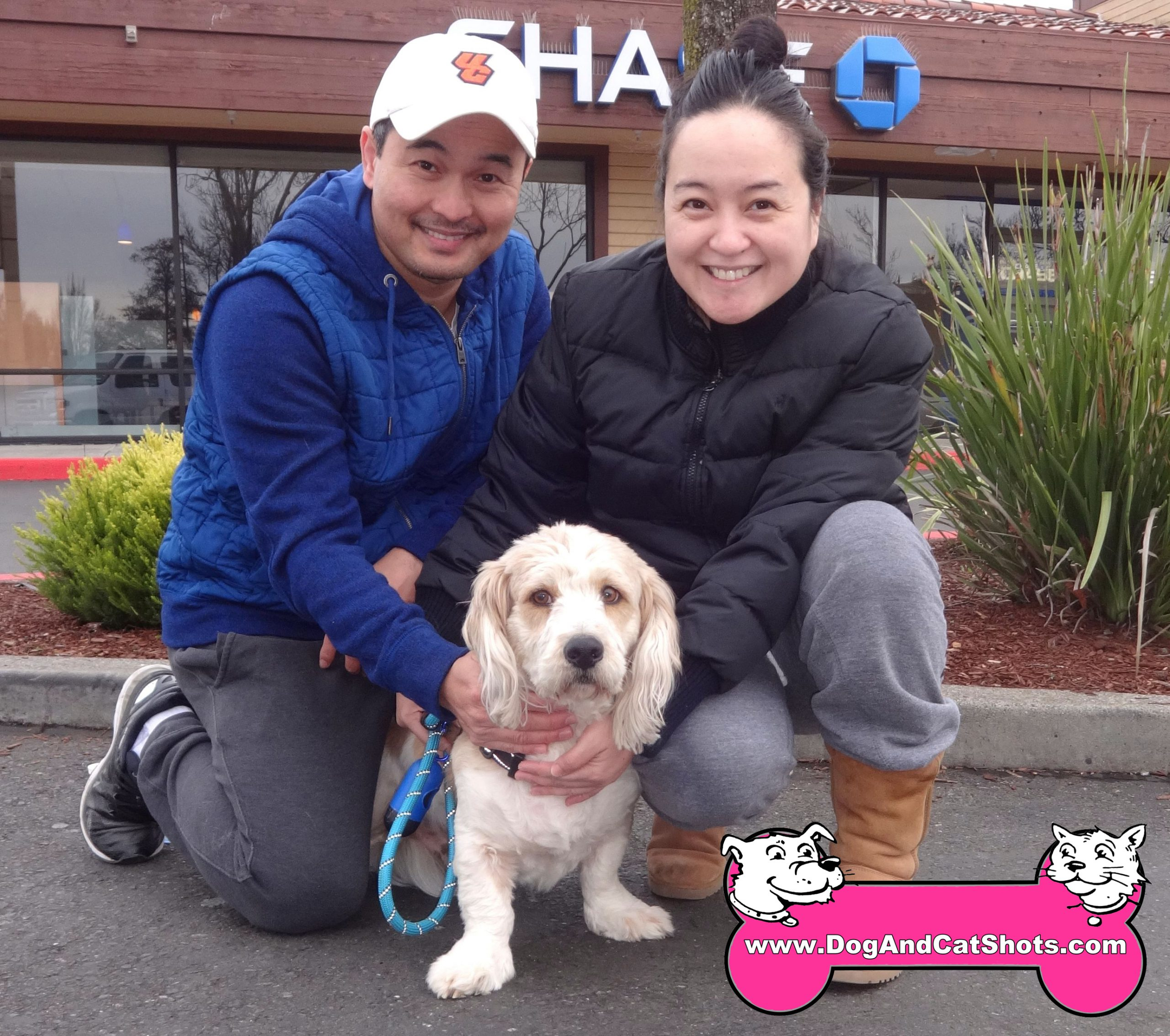 At our Vallejo and American Canyon Clinic, meet Hachiko.