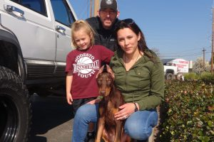 Iris, the Red Doberman at our Modesto Clinic.