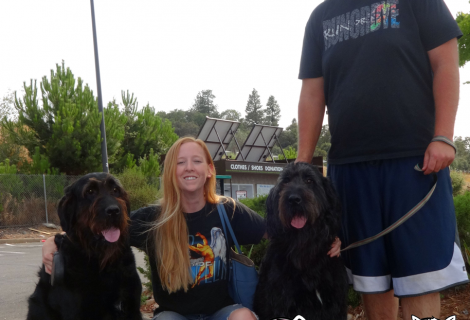 Scooby and Wiggles at our Placerville Clinic